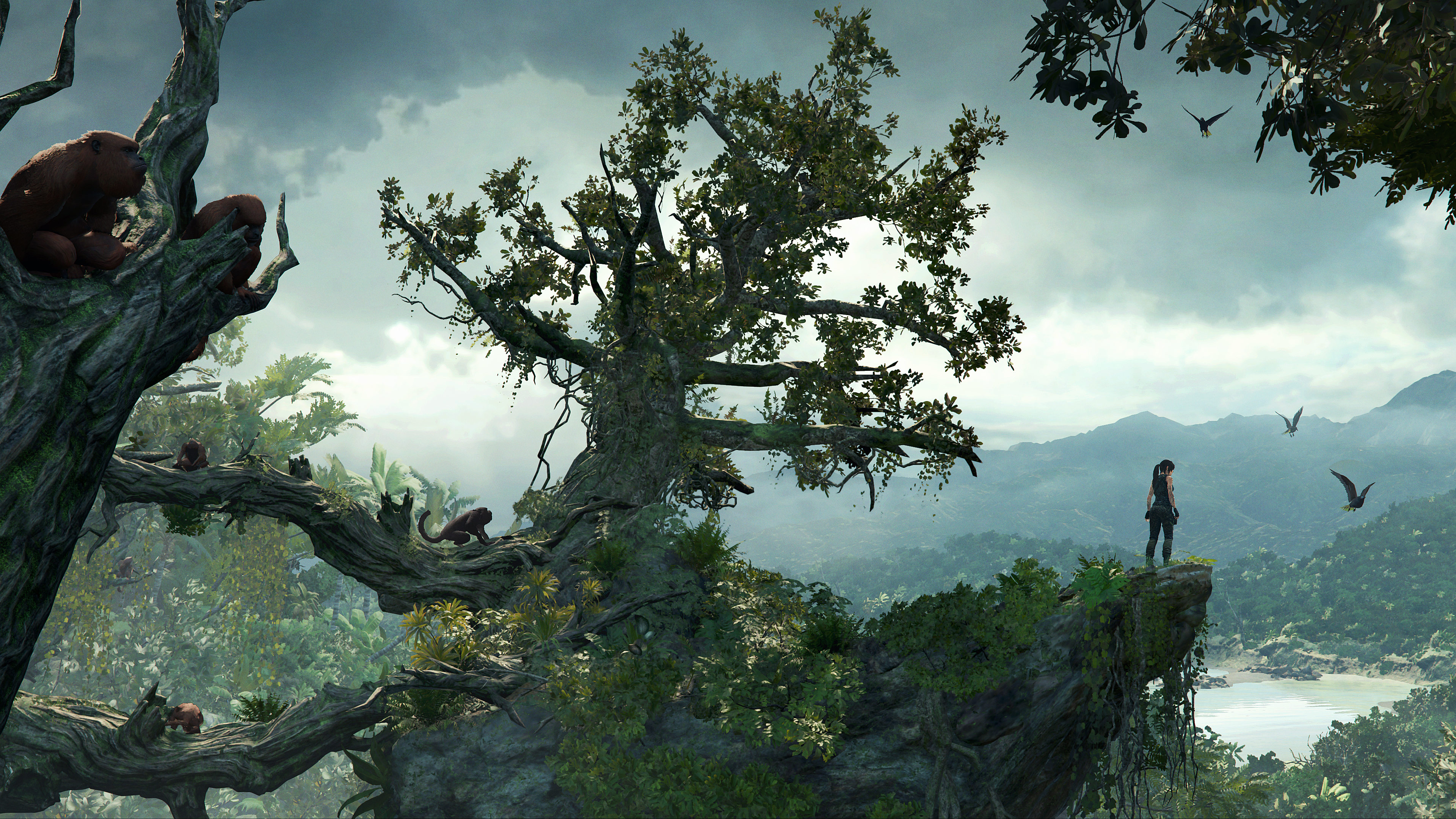 Tomb Raider Eleven Shadow Of The Tomb Raider 2018 Picture